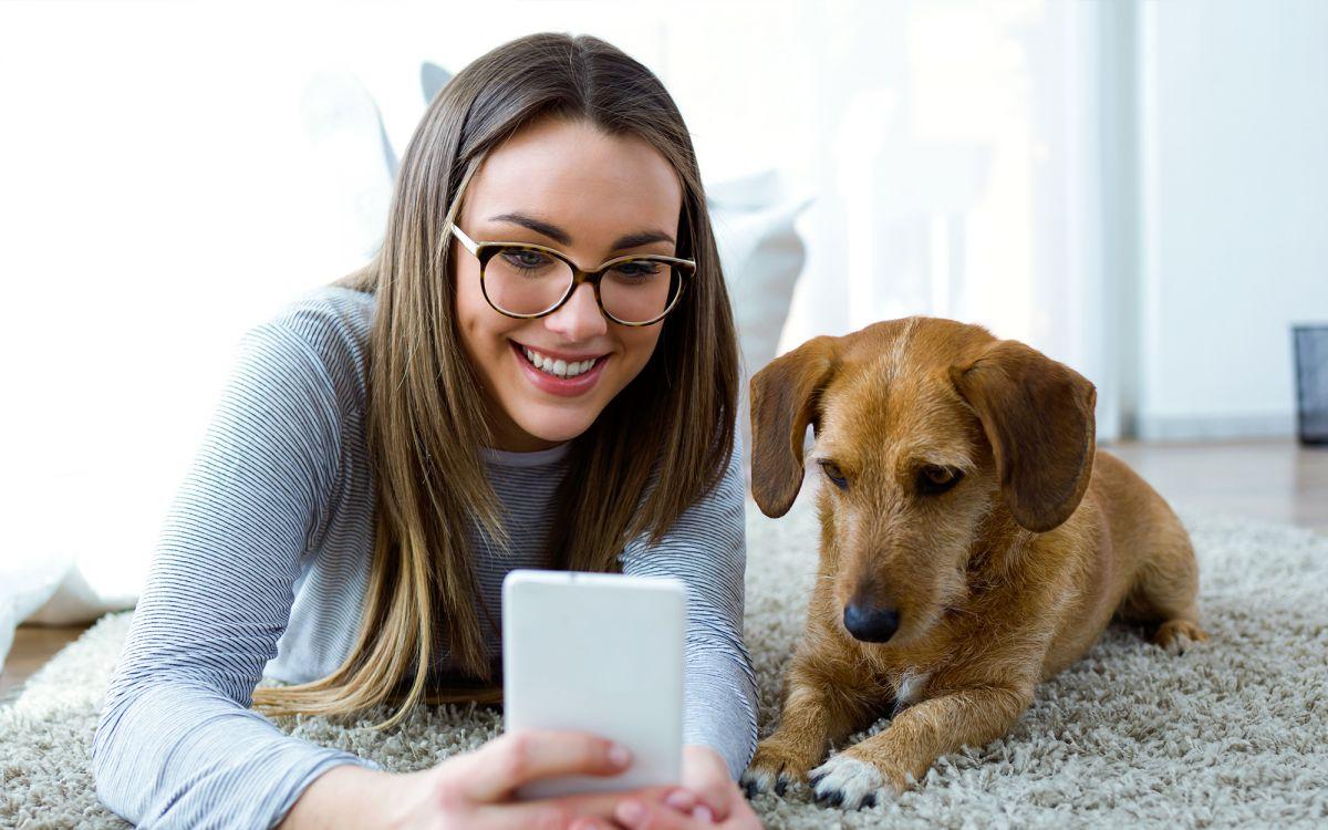 Hundehalter Haftpflicht